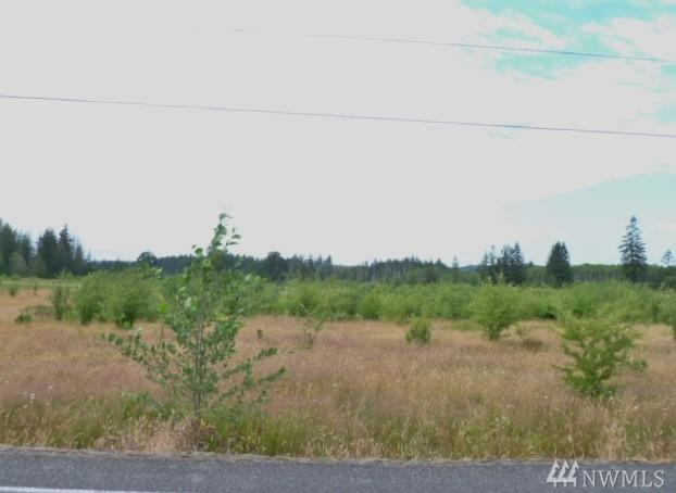 643 Forest Napavine Rd W, Napavine, WA 98532 (#1356395) :: Carroll & Lions