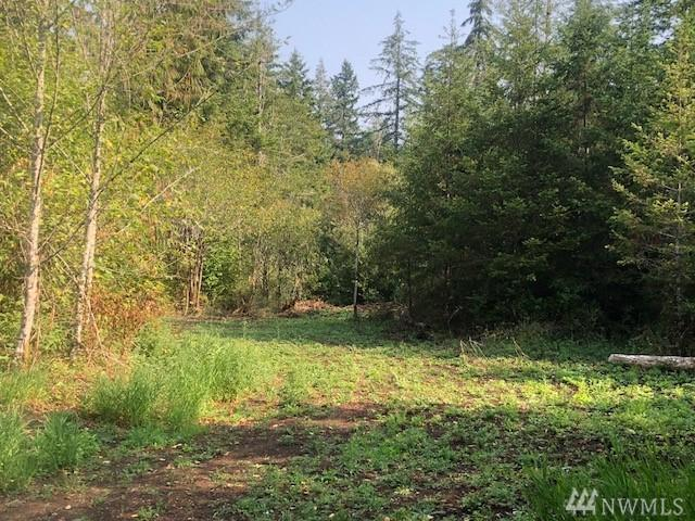 0 E Mox Chehalis Rd, McCleary, WA 98557 (#1358108) :: Homes on the Sound