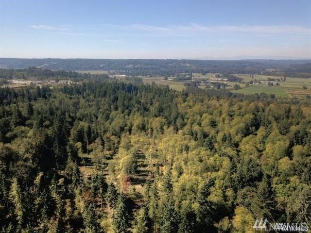 19119 N High Rock Rd, Monroe, WA 98272 (#1359610) :: Real Estate Solutions Group