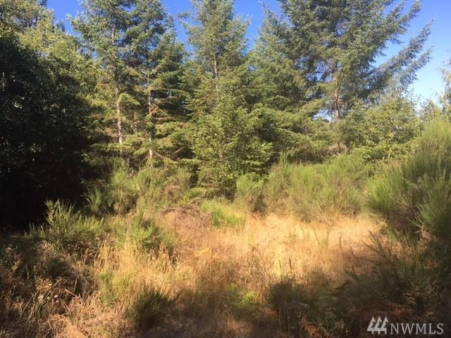 13255 NW Holly Rd, Bremerton, WA 98312 (#1359628) :: Mike & Sandi Nelson Real Estate