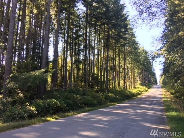 0-Lot 53 Classic Rd, Greenbank, WA 98253 (#1367051) :: Real Estate Solutions Group