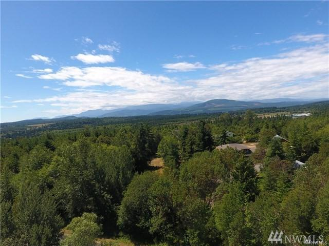 0-Lot 8 Woodland Dr, Port Townsend, WA 98368 (#1367825) :: Pickett Street Properties