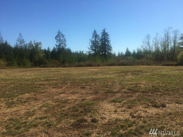 546 Middle Fork Rd, Onalaska, WA 98570 (#1368780) :: Crutcher Dennis - My Puget Sound Homes