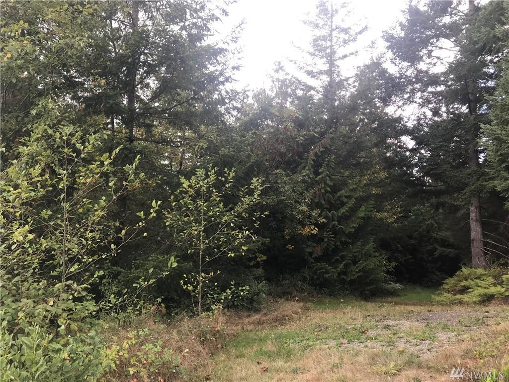 0 Kodiak Lane - Photo 1