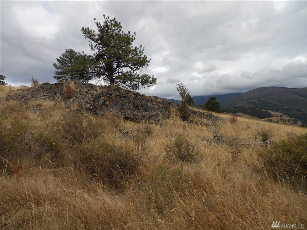 12345 Lambert Mountain Road - Photo 1