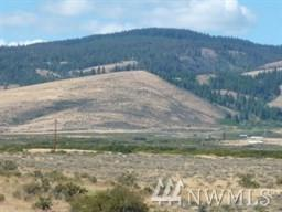 708034 Pheasant Lane, Ellensburg, WA 98926 (#1369234) :: McAuley Real Estate
