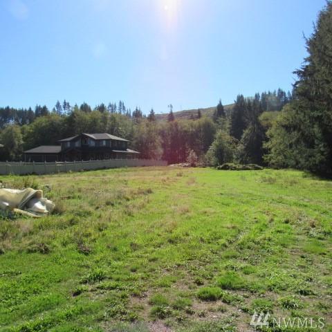 600 Elochoman Valley Rd, Cathlamet, WA 98612 (#1369276) :: Kimberly Gartland Group