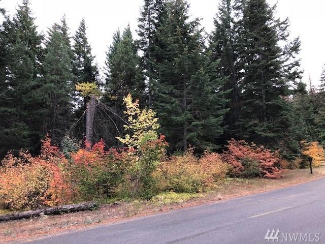 2081 Ruby King Lp, Cle Elum, WA 98922 (#1370678) :: Ben Kinney Real Estate Team