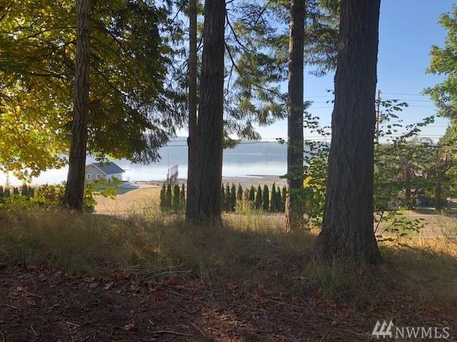 4090 NE North Shore Rd, Belfair, WA 98528 (#1372439) :: Alchemy Real Estate
