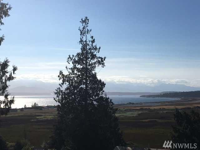 0-XX Halsey Dr, Coupeville, WA 98239 (#1375061) :: Real Estate Solutions Group