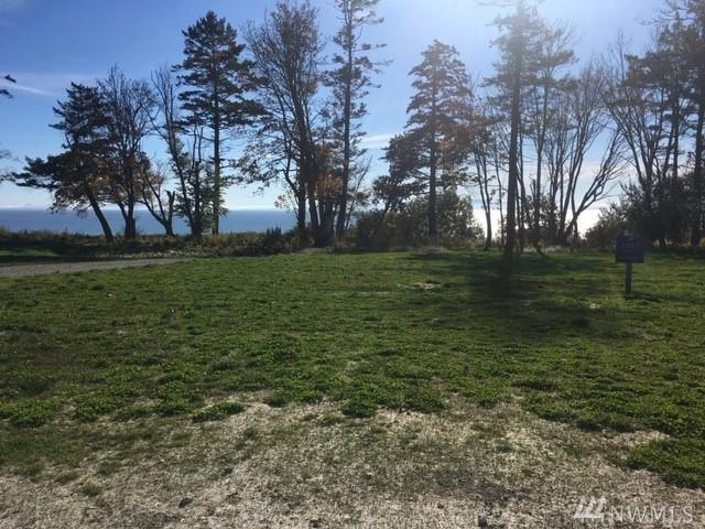 2232 Seabright Lp, Point Roberts, WA 98281 (#1375519) :: Alchemy Real Estate