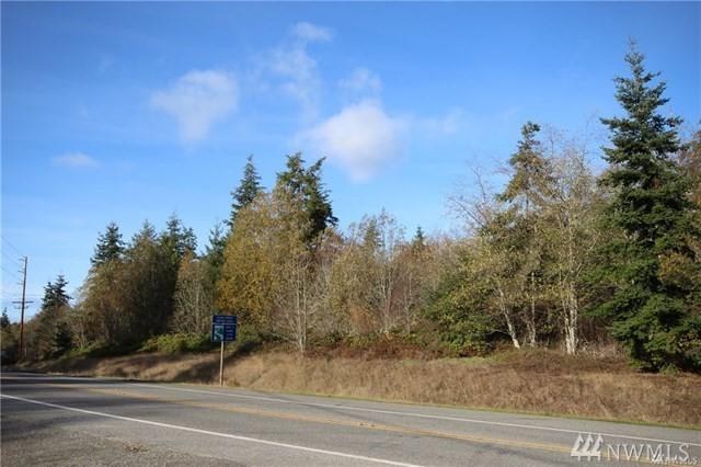 0 W Wanamaker Rd,, Coupeville, WA 98239 (#1376609) :: Icon Real Estate Group
