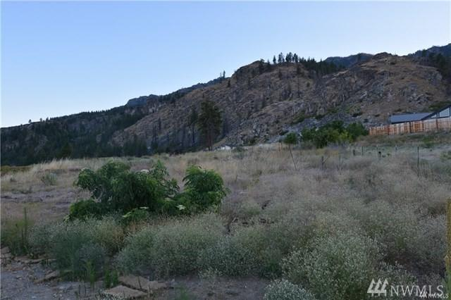 3 8th Fairway Addition, Pateros, WA 98846 (#1376839) :: Chris Cross Real Estate Group