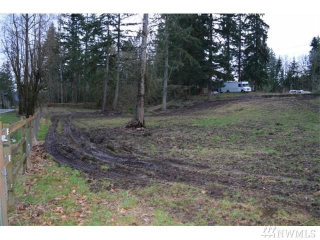 1603 248th Ave SE, Sammamish, WA 98075 (#1377851) :: Kwasi Bowie and Associates