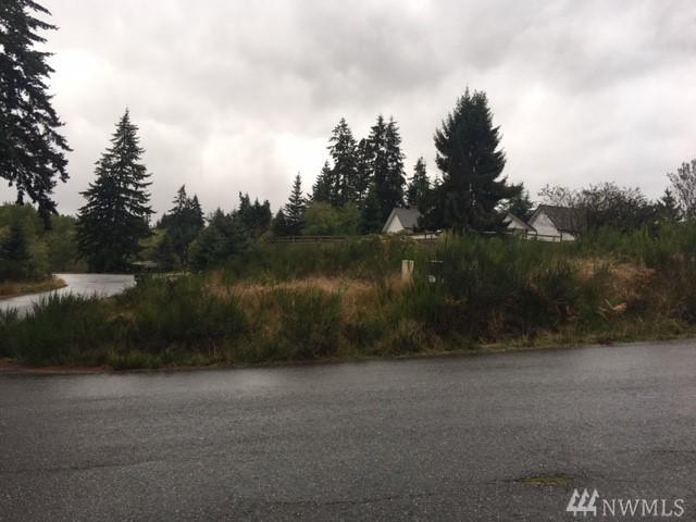 0-Lot 15 Morningside Lane, Freeland, WA 98249 (#1380815) :: Keller Williams Realty Greater Seattle