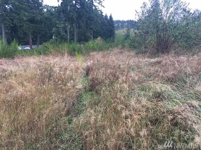 0-Lot 19 Morningside Lane, Freeland, WA 98249 (#1380940) :: Keller Williams Realty Greater Seattle