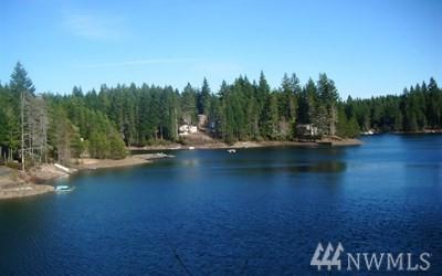 271 NE Circle Dr, Tahuya, WA 98588 (#1382965) :: Homes on the Sound