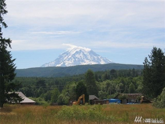 23210 188th St E, Orting, WA 98390 (#1383149) :: NW Home Experts