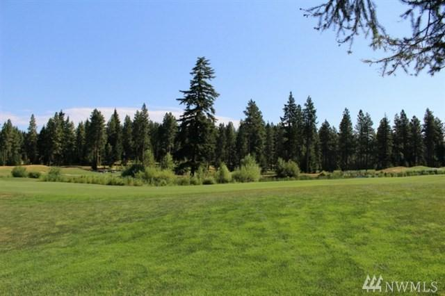 1260 Larkspur Lp, Cle Elum, WA 98922 (#1383289) :: The Home Experience Group Powered by Keller Williams