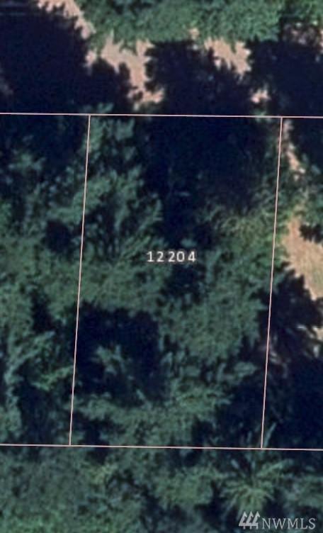 12204 Sound Dr, Anderson Island, WA 98303 (#1383918) :: Kimberly Gartland Group