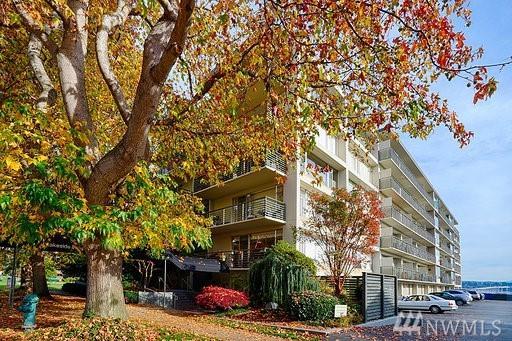 2040 43rd Ave E #615, Seattle, WA 98112 (#1385541) :: Kimberly Gartland Group