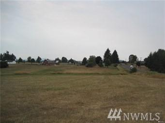 106 Twin View, Winlock, WA 98596 (#1385673) :: Keller Williams Realty