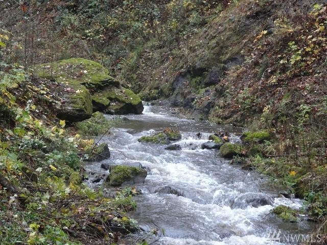 6850 Kalama River Rd, Kalama, WA 98625 (#1389964) :: Kimberly Gartland Group