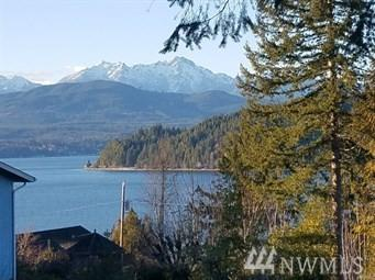 20 E Warren Dr, Union, WA 98592 (#1390966) :: Better Homes and Gardens Real Estate McKenzie Group