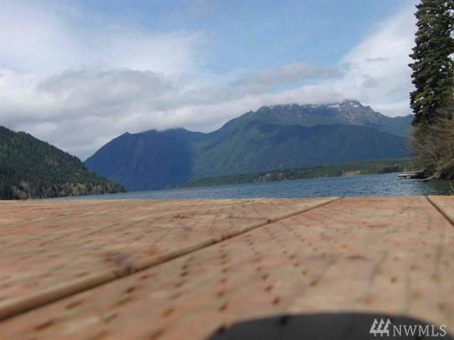 0 N Lake Cushman Rd, Hoodsport, WA 98548 (#1391052) :: Commencement Bay Brokers