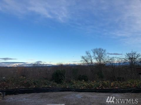 3411 E Grandview Ave Lot 2, Tacoma, WA 98404 (#1391392) :: Ben Kinney Real Estate Team