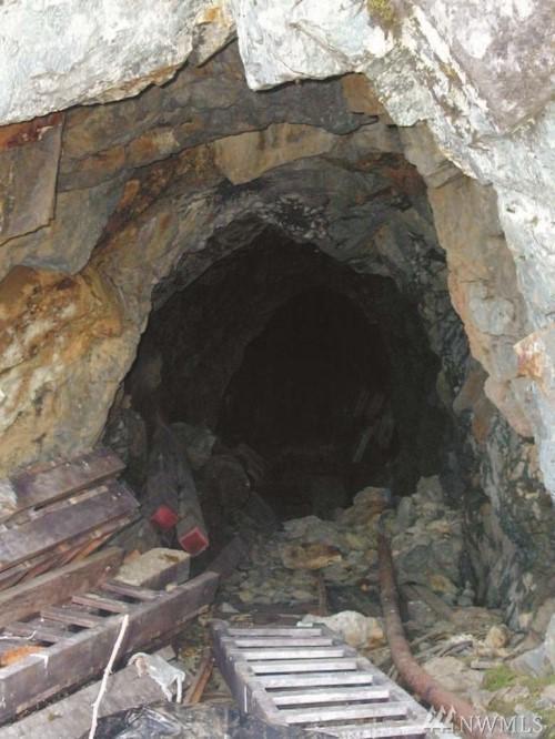 0-xxx Boundary Red Mountain Mine, Sumas, WA 98295 (#1392247) :: Kimberly Gartland Group