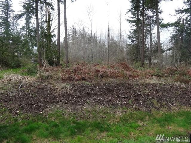 3000-Block Toad Lake Rd, Bellingham, WA 98226 (#1392992) :: The Craig McKenzie Team