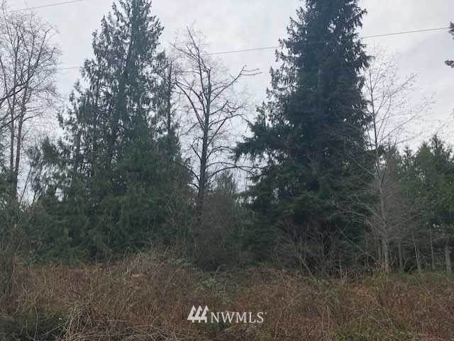 7600 Block 165th Avenue NW, Stanwood, WA 98292 (#1394269) :: Priority One Realty Inc.