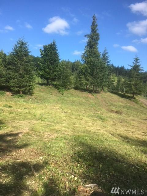 6628 Green Mountain Rd Lot 4, Woodland, WA 98674 (#1395475) :: Pickett Street Properties