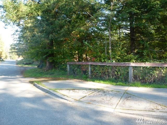 0-Lot 3 6th St, Gold Bar, WA 98251 (#1396132) :: Better Homes and Gardens Real Estate McKenzie Group