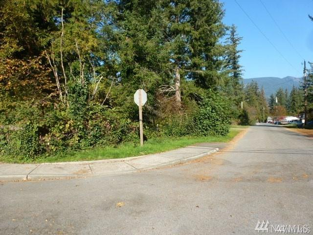 0-Lot 4 6th St, Gold Bar, WA 98251 (#1396142) :: Real Estate Solutions Group