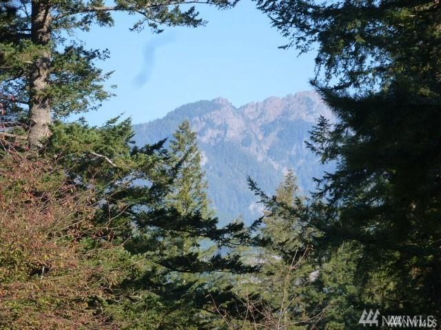 0-Lot 5 7th St, Gold Bar, WA 98251 (#1396148) :: Real Estate Solutions Group