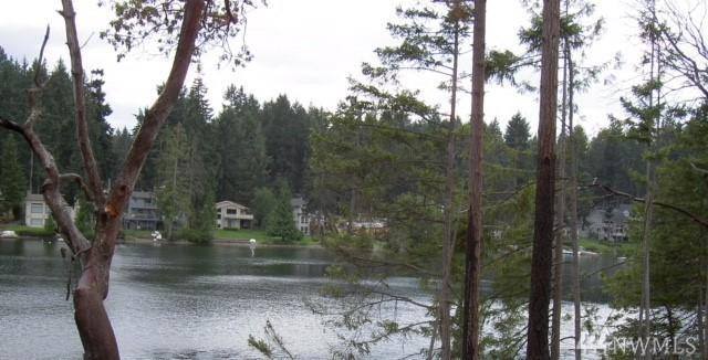 11700 Guthrie Rd, Anderson Island, WA 98303 (#1400515) :: Homes on the Sound