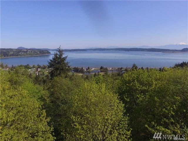 0 Dugualla Bay Rd, Oak Harbor, WA 98277 (#1400673) :: The Kendra Todd Group at Keller Williams
