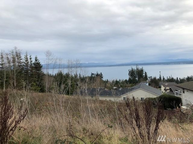 0-Lot 45 Lightning Wy, Camano Island, WA 98282 (#1401910) :: Better Homes and Gardens Real Estate McKenzie Group