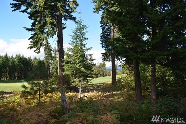 132 Sweet Shop Lane, Cle Elum, WA 98922 (#1402163) :: Homes on the Sound