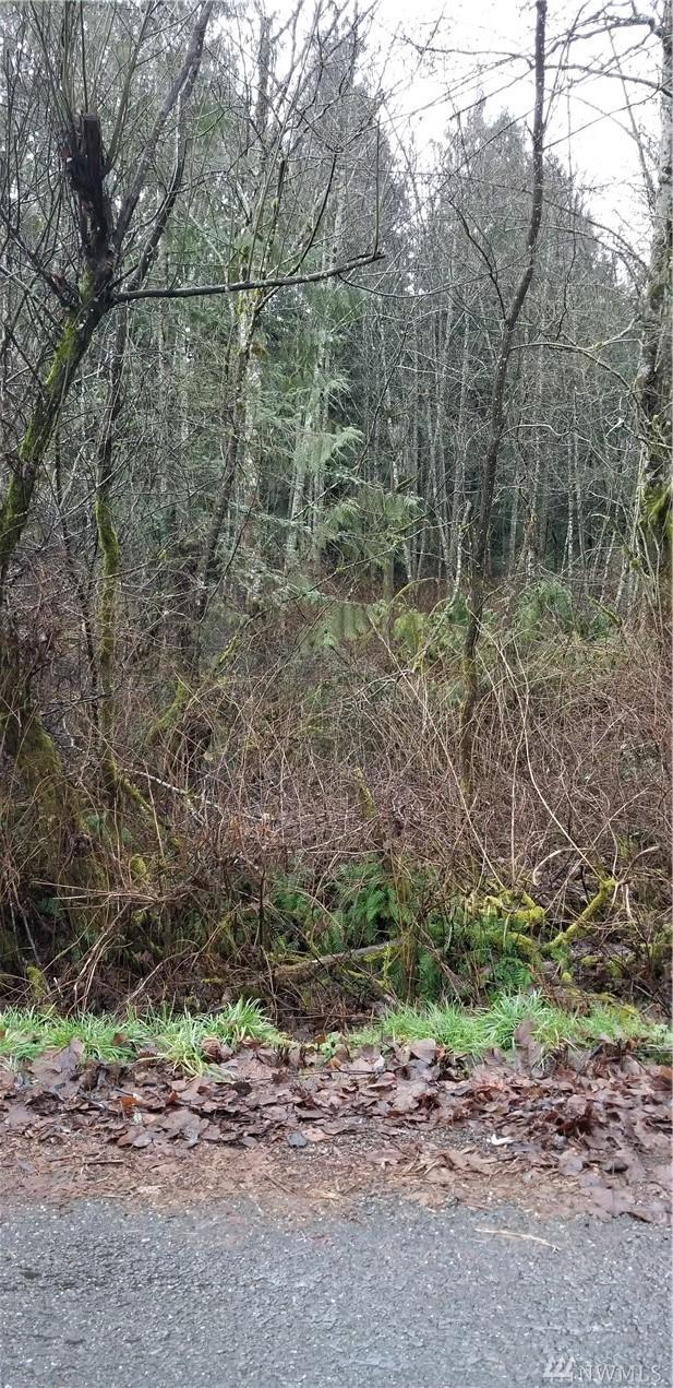 8337 Van Decar Rd SE, Port Orchard, WA 98367 (#1402962) :: Pickett Street Properties