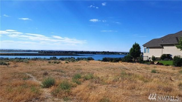 8682 Dune Lake Rd SE, Moses Lake, WA 98837 (#1403279) :: Homes on the Sound