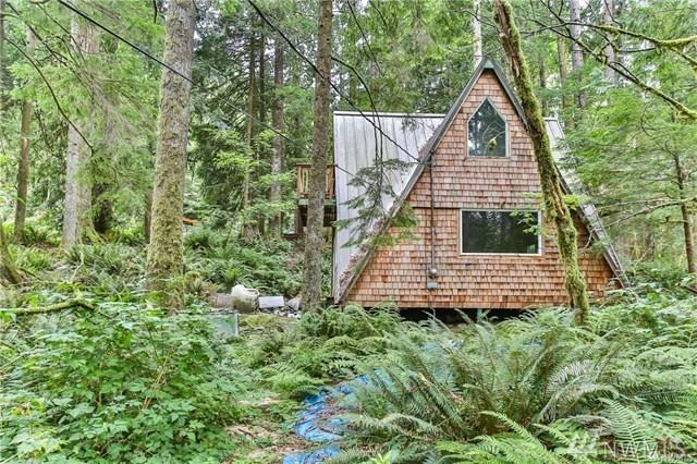50314 Mt Index River Rd, Index, WA 98256 (#1403288) :: Homes on the Sound