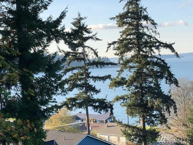 0-Lot28-31 Ekle Rd, Camano Island, WA 98282 (#1403525) :: Kimberly Gartland Group