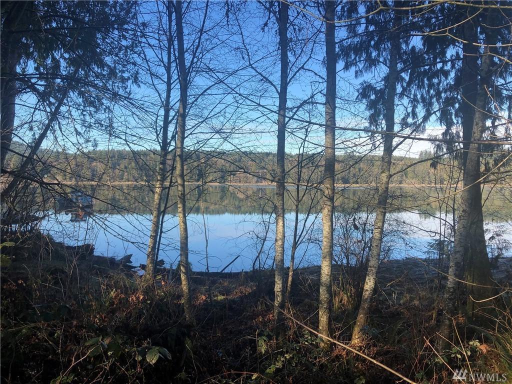 851 SE Kamilche Point Rd, Shelton, WA 98584 (#1407712) :: Urban Seattle  Broker