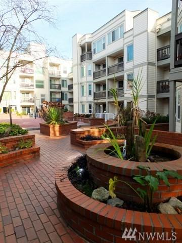 2152 N 112th St #317, Seattle, WA 98133 (#1408510) :: Real Estate Solutions Group