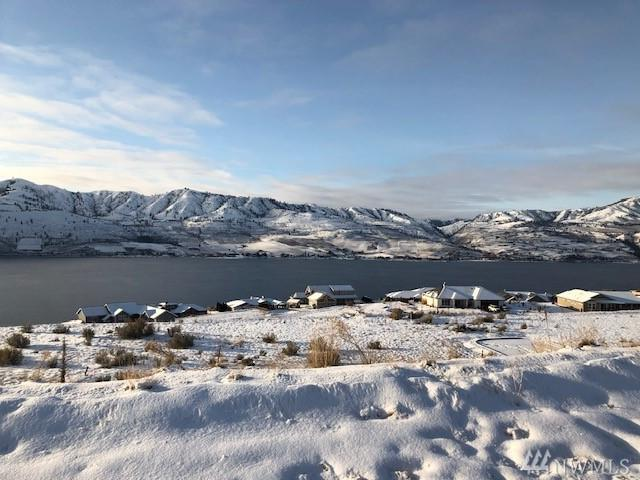 116 Sky Harbor Dr, Chelan, WA 98816 (#1409699) :: Better Homes and Gardens Real Estate McKenzie Group