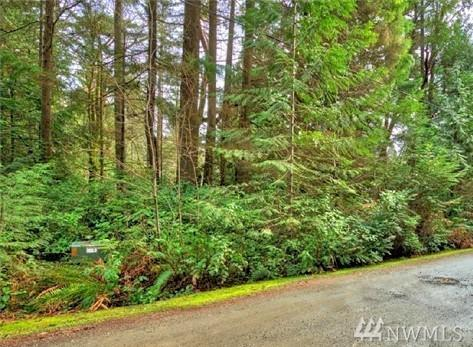 0-XXXX 58th Ave NW, Gig Harbor, WA 98332 (#1409723) :: Homes on the Sound