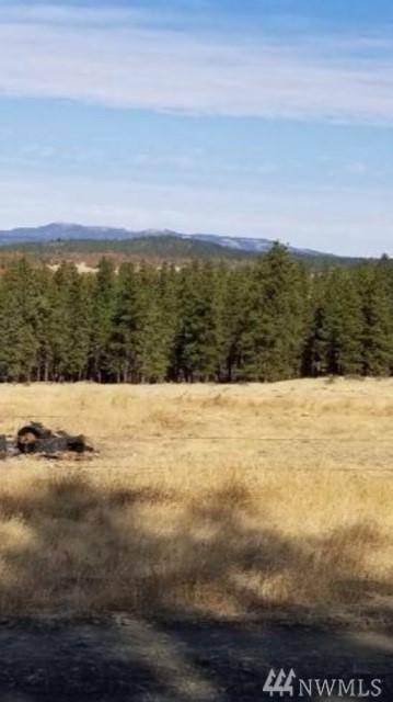 0 Piluk Rd, Goldendale, WA 98387 (#1410044) :: Homes on the Sound